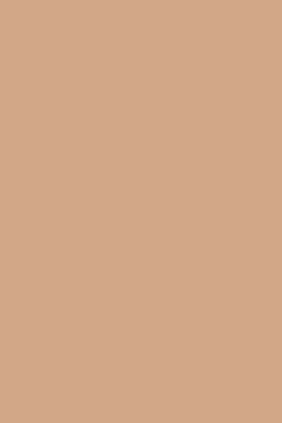 Farrow & Ball Fake Tan