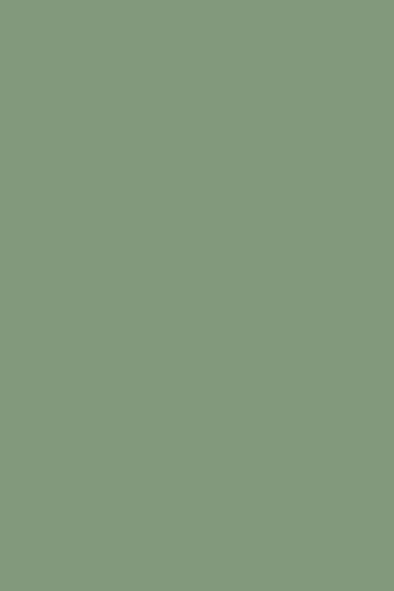 Farrow & Ball Pea Green