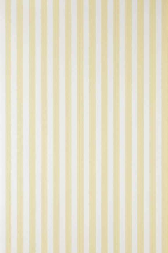 Farrow & Ball Closet Stripe BP 356