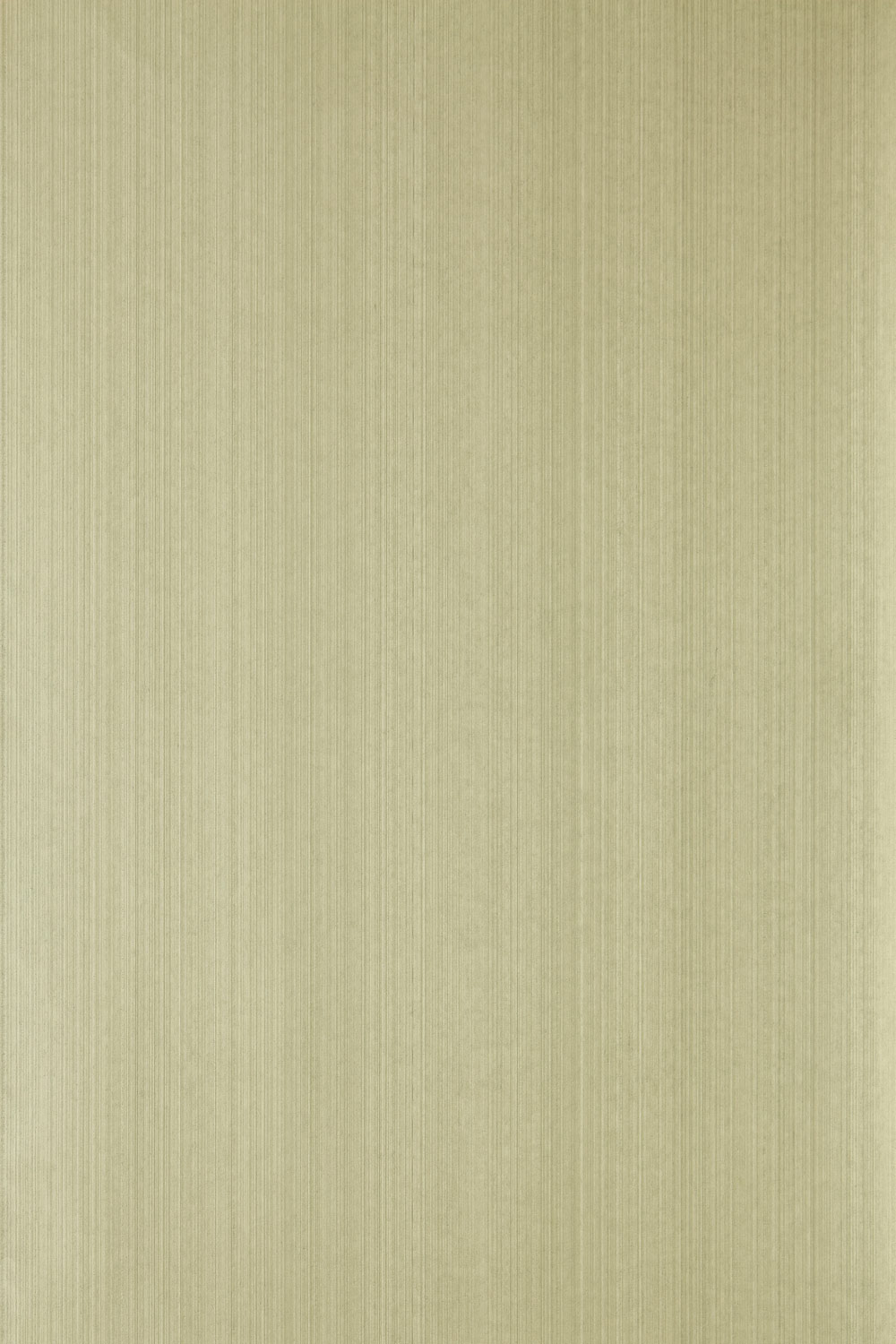 Farrow & Ball Drag DR 1221
